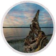 Natural Driftwood At Birch Bay State Park Round Beach Towel
