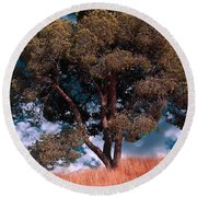 Nature - Green Tree Round Beach Towel