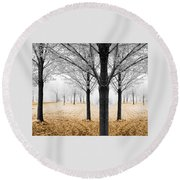 Nature - Mixed Season Round Beach Towel