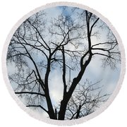 Nature - Tree In Toronto Round Beach Towel