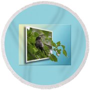 Nature Bird Round Beach Towel