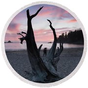 Nature Framed Round Beach Towel