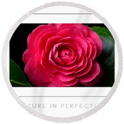 Nature In Perfection Poster Round Beach Towel