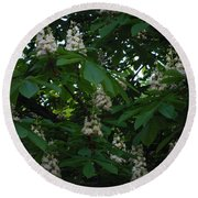 nature Ukraine blooming chestnuts Round Beach Towel