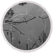 Natures Bridge Round Beach Towel