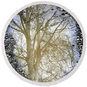 Natures Looking Glass 4 Round Beach Towel
