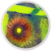 Natures Own Round Beach Towel