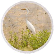 Nature's Picture Round Beach Towel