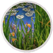Nature's Window #h5 Round Beach Towel by Leif Sohlman
