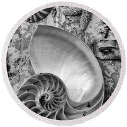 Nautilus Shell With Starfish Round Beach Towel