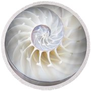 Nautilus Square Round Beach Towel