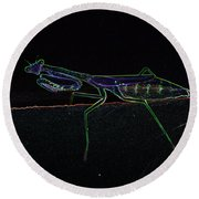 Neon Praying Mantis Round Beach Towel
