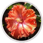 Neon-red Hibiscus Flowers 6-17 Round Beach Towel