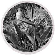 Nepenthe Bird Of Paradise B And W Round Beach Towel