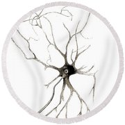 Nerve Cell From Spinal Cord, Deiters Round Beach Towel