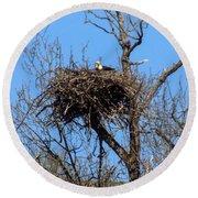 Nesting Bald Eagle Round Beach Towel