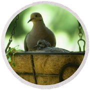 Nesting Doves, Hanging Basket, Balcony Garden, Hunter Hill, May  Round Beach Towel