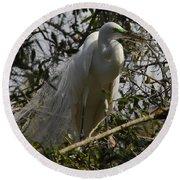 Nesting Egret Round Beach Towel