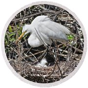 Nesting Great Egret With Chick Round Beach Towel