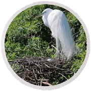 Nesting Great Egret With Egg Round Beach Towel