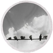 Network Of The Bird Line  Round Beach Towel