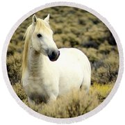 Nevada Wild Horses 3 Round Beach Towel
