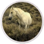 Nevada Wild Horses 4 Round Beach Towel