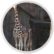 New Baby Giraffe Round Beach Towel