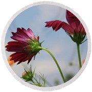 New Jersey Wildflowers In The Wind Round Beach Towel