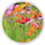 New Jersey Wildflowers Round Beach Towel