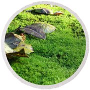 New Moss Round Beach Towel