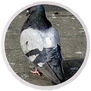 New York City Pigeons # Round Beach Towel