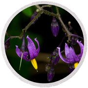Nightshade Wildflowers #5616 Round Beach Towel