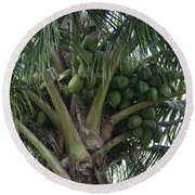 Niu Ola Hiki Coconut Palm Round Beach Towel