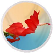 No Fear Of Flying Round Beach Towel