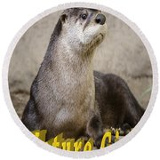 North American Otter Nature Girl Round Beach Towel