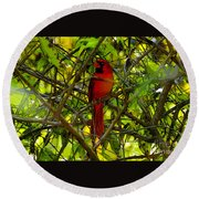 Northern Cardinal Work Number Two Round Beach Towel