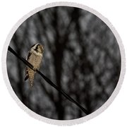 Northern Hawk-owl 22 Round Beach Towel