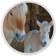 Norwegian Fjord Horse And Colt 1 Round Beach Towel