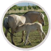 Norwegian Fjord Horse And Colt Round Beach Towel