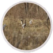 Nothing But White Tails Round Beach Towel