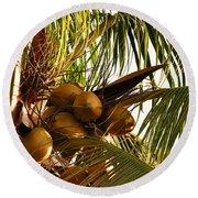 Nuts On Tree  Round Beach Towel