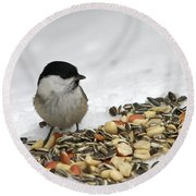 Nuts Said The Willow Round Beach Towel