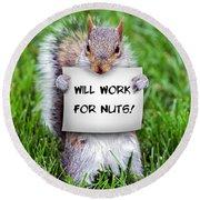 Nutty Squirrel Round Beach Towel