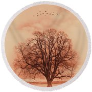 Oak Tree Alone  Round Beach Towel