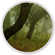 Oaks Off The Trail Round Beach Towel