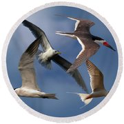 Ocean Bird Collage Round Beach Towel