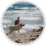 Ocean Dog Round Beach Towel