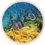 Oceans Below Round Beach Towel