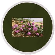 Ocotilla Wells Pink Flowers 2 Round Beach Towel